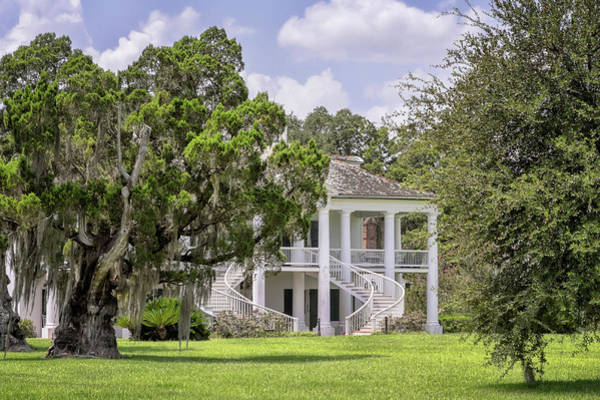 Photograph - Evergreen Plantation by Susan Rissi Tregoning