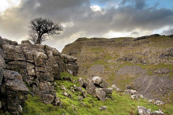 Moor Photograph - Ewe Cross Moor by Michael Honor