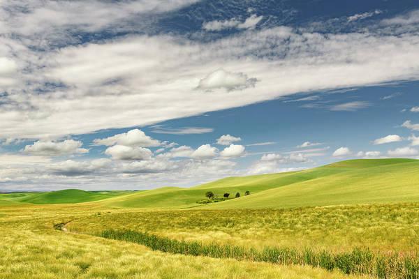 Wall Art - Photograph - Expansive Rolling Fields Of Wheat by Adam Jones