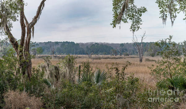 Photograph - Expansive Salt Marsh View by Dale Powell