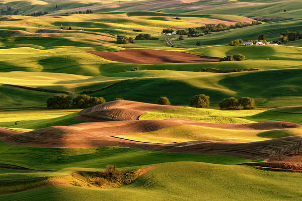 Wall Art - Photograph - Expansive View Of Palouse Farming by Adam Jones