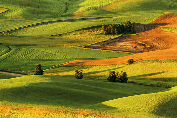 Wall Art - Photograph - Expansive View Of Rolling Hills by Adam Jones