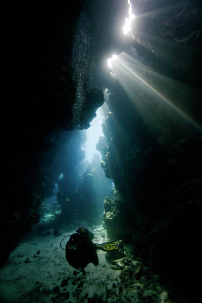 Scuba Diving Photograph - Exploring Underwater Caves by Stephen Ennis Photography