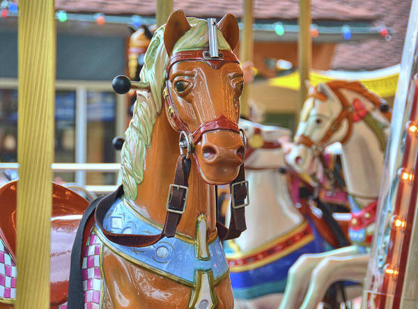 Photograph - Expressive Carousel by Jamart Photography
