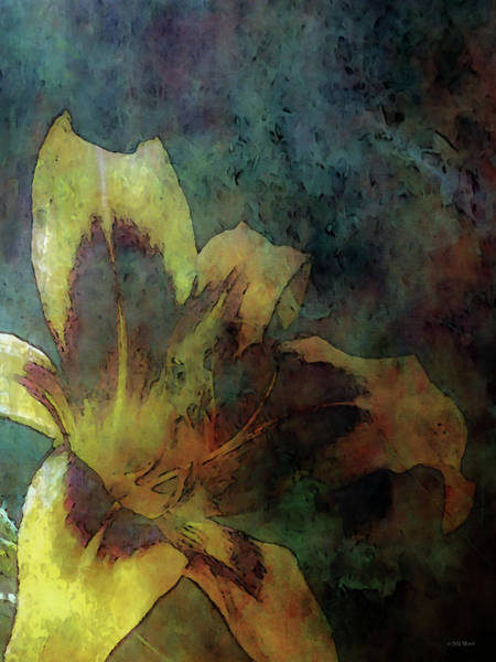 Photograph - Expressive Light In The Dark 1275 Idp_eld_2 by Steven Ward
