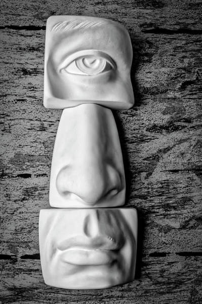 Wall Art - Photograph - Eye Nose Mouth by Garry Gay