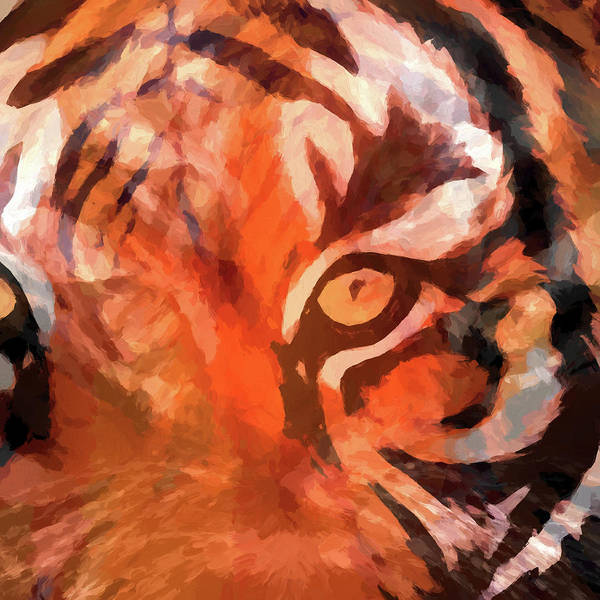 Painting - Eye Of The Tiger by Dan Sproul