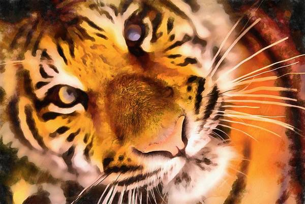 Wall Art - Painting - Eyes Of The Tiger by Harry Warrick