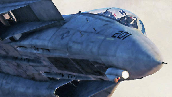 Painting - F-14 Tomcat - 13 by Andrea Mazzocchetti