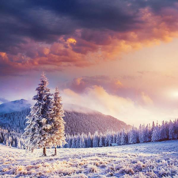 Fabulous Winter Landscape In The Art Print