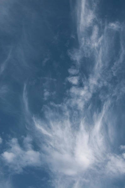 Photograph - Face In Cloud by Kathleen Gauthier