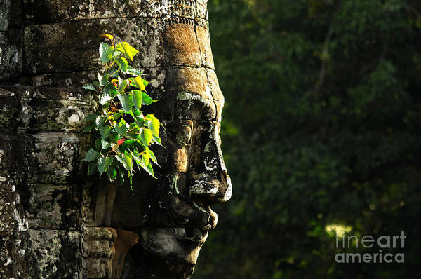 Wall Art - Photograph - Face Of Bayon by Steffen Hoppe