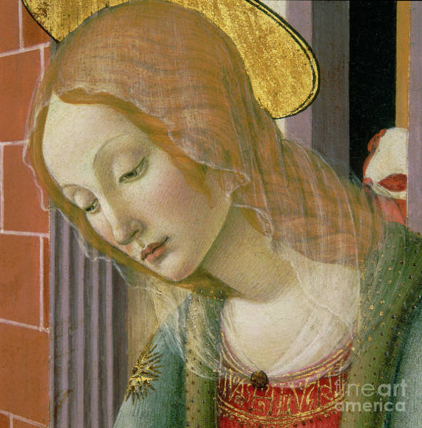Wall Art - Painting - Face Of The Virgin, Detail by Francesco Botticini