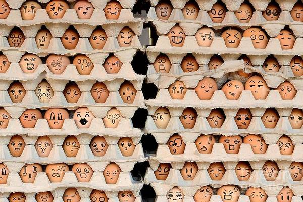 Amusing Wall Art - Photograph - Faces On The Eggs. Differences Faces by Kemal Taner