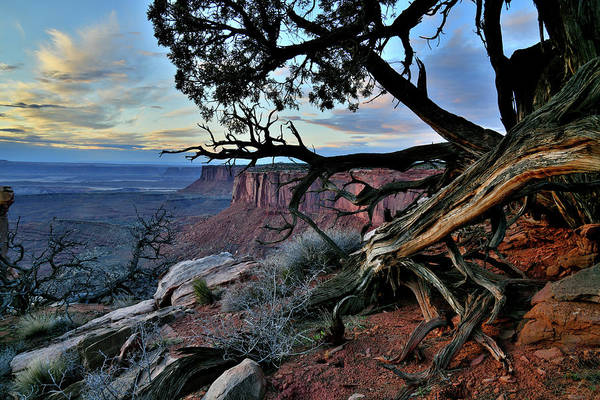 Photograph - Fading Light On Orange Cliffs Of Canyonlands by Ray Mathis