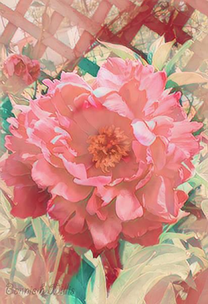 Digital Art - Fairest Of The Fair by Bonnie Willis