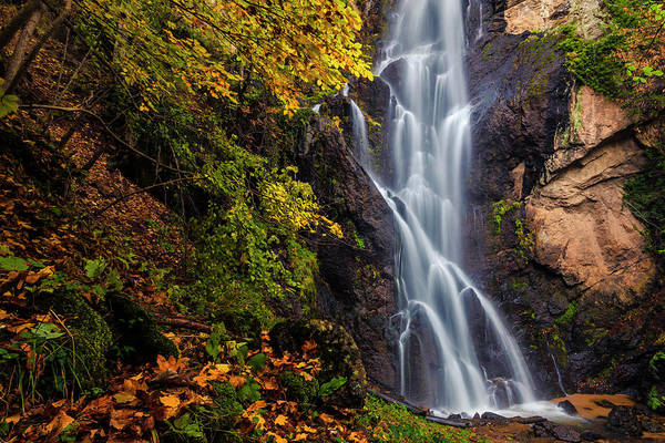 Wall Art - Photograph - Fairy Falls by Evgeni Dinev