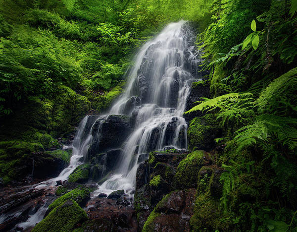 Wall Art - Photograph - Fairy Falls Long Exposure In Colombia by Sheila Haddad