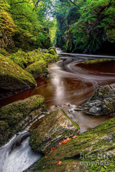 Wall Art - Photograph - Fairy Glen Gorge by Adrian Evans