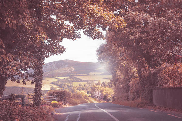 Photograph - Fairy Way To Sugarloaf Hill. Ireland by Jenny Rainbow