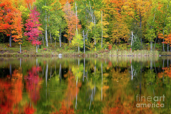 Wall Art - Photograph - Fal Reflection by Todd Bielby