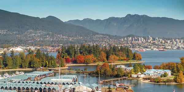 Photograph - Fall Arrives In Stanley Park by Ross G Strachan