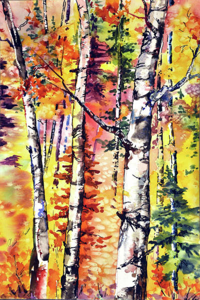 Fall Aspen Colors Art Print