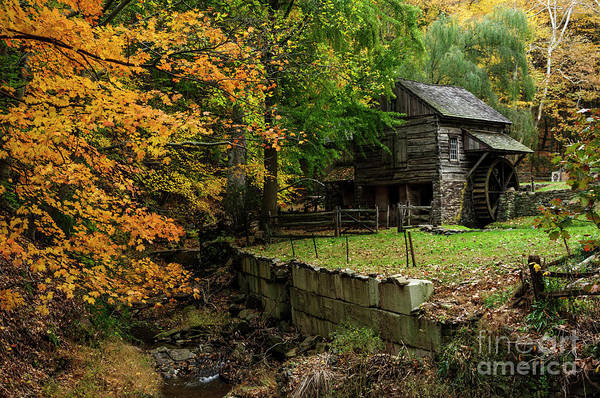 Photograph - Fall At Cuttalossa Farm by Debra Fedchin