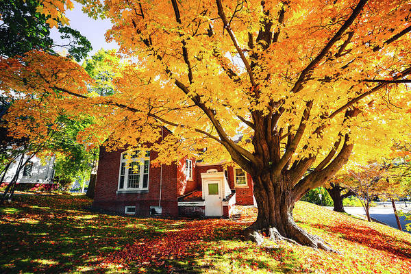 Photograph - Fall At Goss Reading Room by Robert Clifford