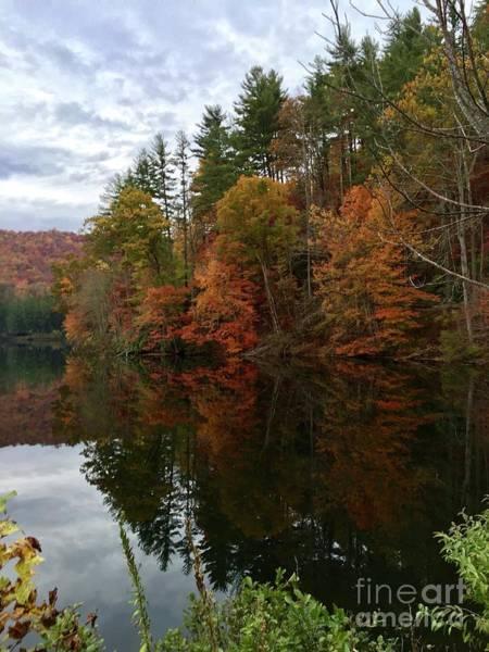 Photograph - Fall At Lake Logan by Flavia Westerwelle
