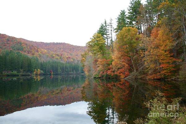 Photograph - Fall At Lake Logan, Nc by Flavia Westerwelle