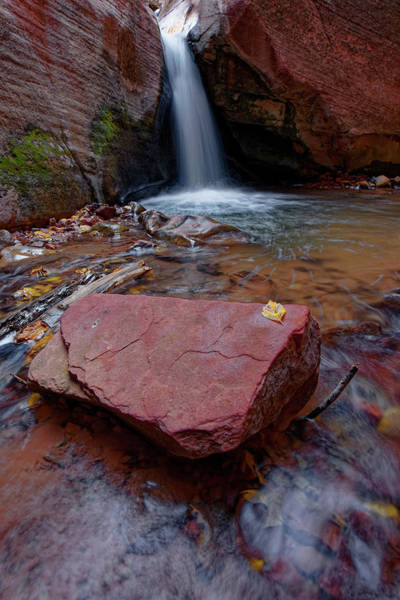 Photograph - Fall At The Waterfall by Jonathan Davison