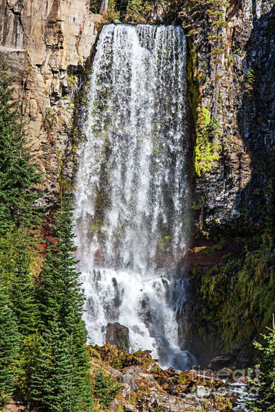 Photograph - Fall At Tumalo Falls by David Millenheft