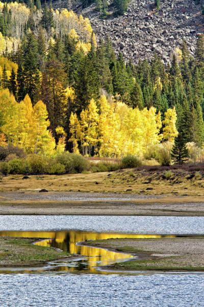 Photograph - Fall At Water Dog Reservoir by Robert Woodward