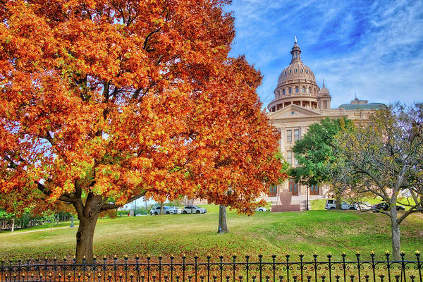 Photograph - Fall Beauty At The Texas State Capital by Lynn Bauer