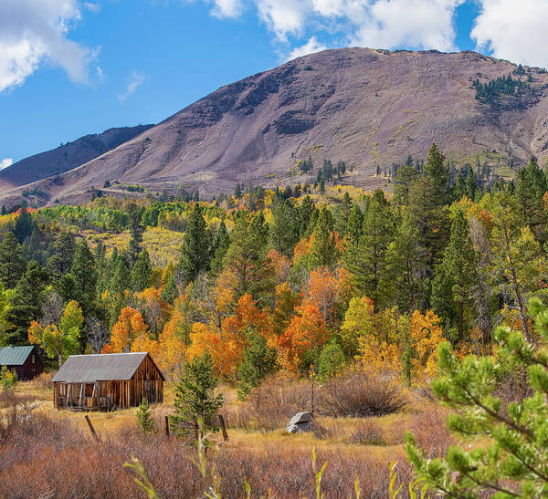 Photograph - Fall Cabin - 1 by Jonathan Hansen