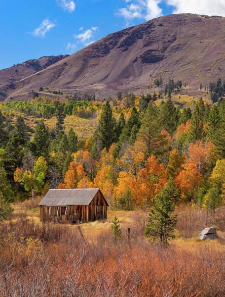 Photograph - Fall Cabin - 2 by Jonathan Hansen