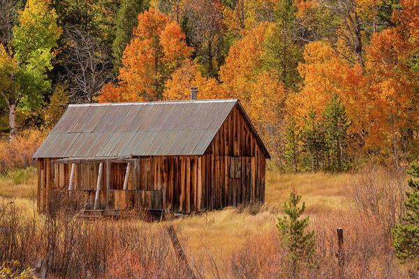 Photograph - Fall Cabin - 3 by Jonathan Hansen