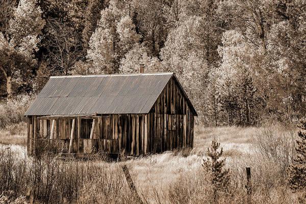 Photograph - Fall Cabin - Sepia by Jonathan Hansen
