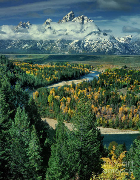Photograph - Fall Color Along The Snake River Grand Tetons Np Wyoming by Dave Welling