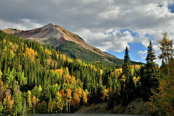 Photograph - Fall Color Aspens Beneath Red Mountain by Ray Mathis