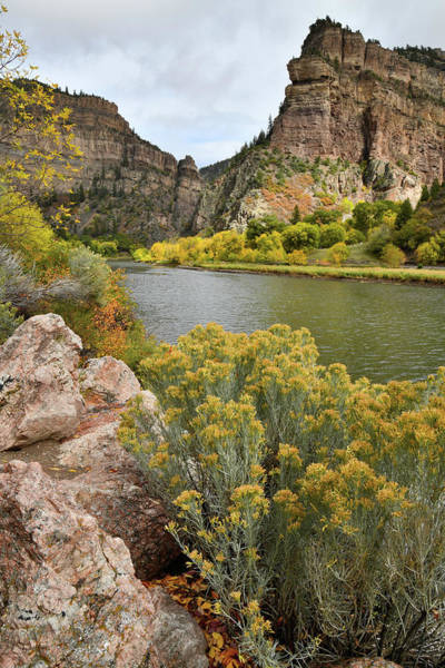 Photograph - Fall Color At Hanging Lake Rest Area In Glenwood Canyon by Ray Mathis