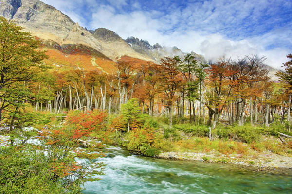 Inspirational Photograph - Fall Color In Patagonia by Inspirational Images By Ken Hornbrook