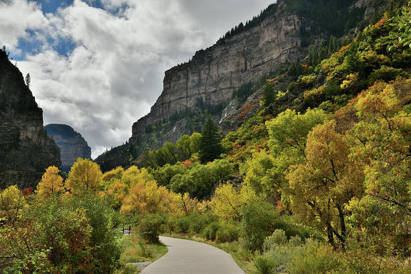 Photograph - Fall Color Lines The Walkway At Hanging Lake Rest Area by Ray Mathis
