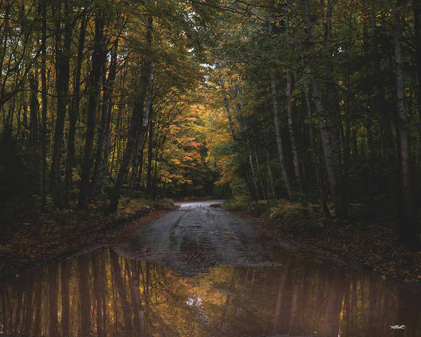 Photograph - Fall Color Reflections by Tailor Hartman
