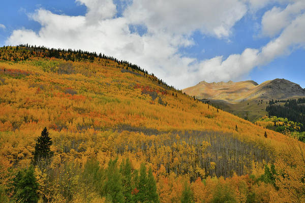 Photograph - Fall Colored Skyline Along Million Dollar Highway by Ray Mathis