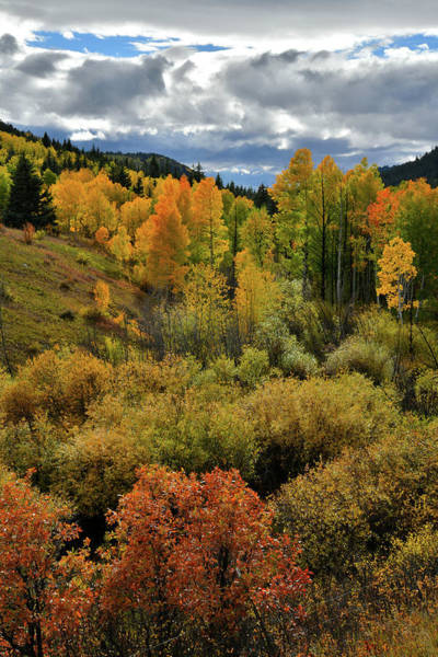 Photograph - Fall Colors Along Highway 62 by Ray Mathis