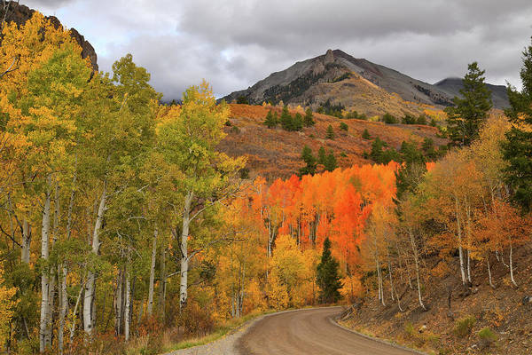 Photograph - Fall Colors Along Winding Last Dollar Road by Ray Mathis