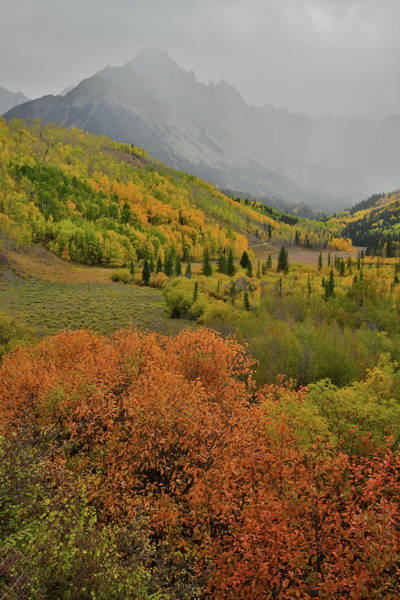 Photograph - Fall Colors And A Barely Visible Mt. Sneffels by Ray Mathis