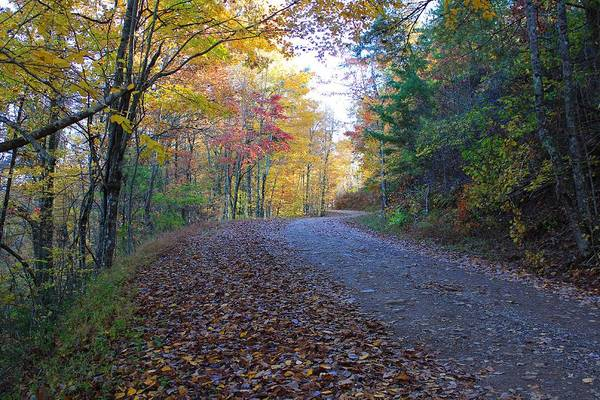 Photograph - Fall Colors And Backroads by Richard Parks